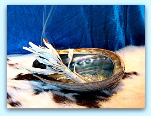 white sage in abalone shell
