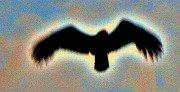 Mystic Flight