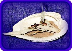 shell smudge pot